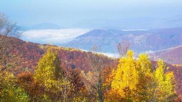 mañana brumosa de otoño en las montañas