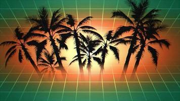 palmeiras e pôr do sol com grade
