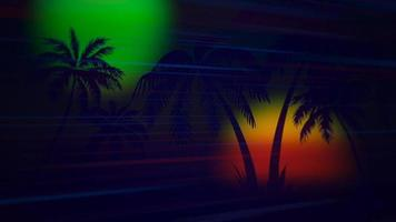 Palm trees in night video