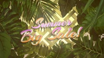 Summer Big Sale and tropical leaves video