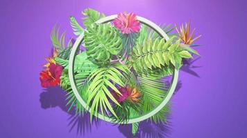 Tropical flowers and leaves video
