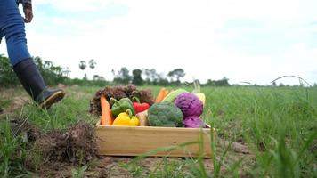 Farmers bring vegetables harvested to customers.