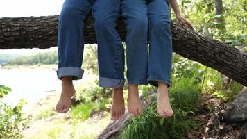 Zwei Mädchen schwingen ihre Füße auf einem großen Ast video
