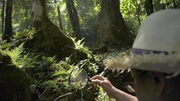 El biólogo usa una lupa para ver los detalles de las plantas.