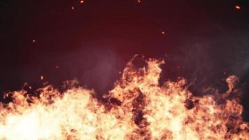 Burning flames in dark background video