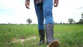 Front of Farmer  in rubber boots on a green field