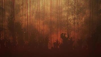 sangue e mãos em fundo escuro