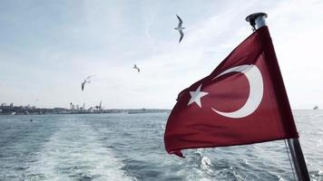 Seagulls in Slow Motion and Turkish Flag