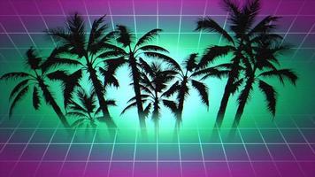 palme incorniciate