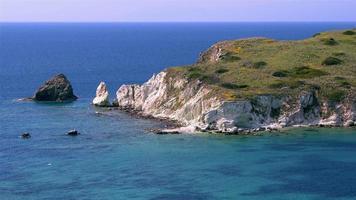 mouettes et île déserte