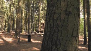 una casa de juegos vacía en un bosque