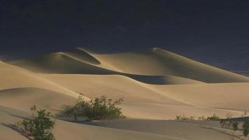 une brise souffle sur les dunes de sable de la vallée de la mort video