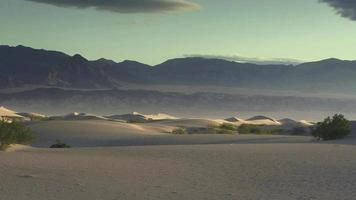 dunes de sable dans la lumière du matin video
