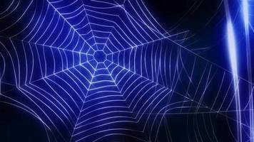 fondo de seda de araña video