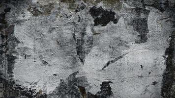 sfarfallio sfondo grigio grunge