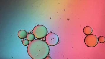 Movimiento de burbujas de aceite multicolores en un líquido. video