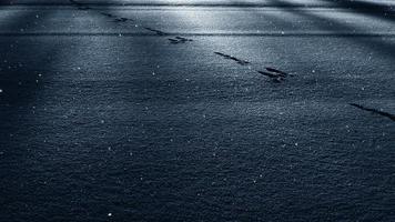 luz y sombra en la nieve