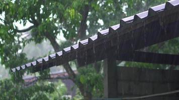 chuva caindo em um telhado velho