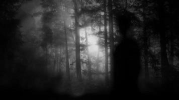 silueta fantasma en el bosque oscuro