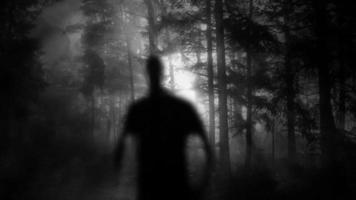 Male Silhouette Walking In Forest