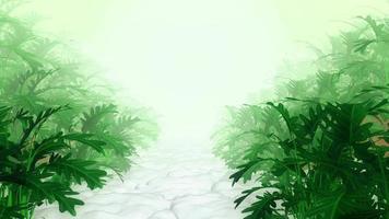 plantas abstractas en el jardín blanco video