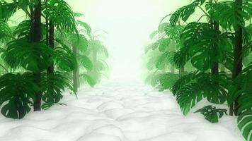 plantas monstera em jardim branco video