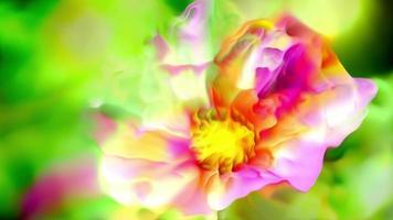 arte abstracto de flores de primavera
