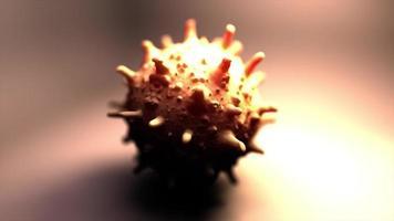 ein einziges Sars-Virus