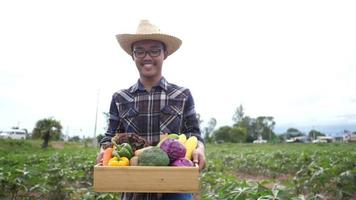 Asian Male Farmer Holding a Box of Organic Vegetables