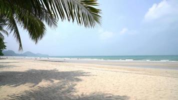 Tropical Beach Breeze video