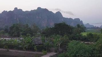 cem milhões de morcegos voando, Tailândia