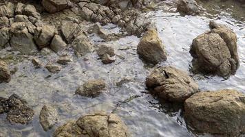 rocas en la playa con mar agitando.