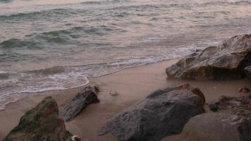 plage dans la lumière du matin