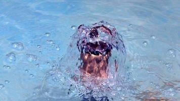 gotas de água de piscina relaxantes e tranquilas video