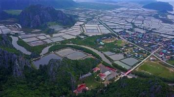 Shrimp farms from above in  Thailand. video