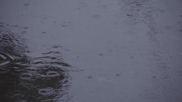 pluie tombant sur l'eau