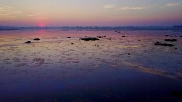 Morning scene on Red Lotus Lake