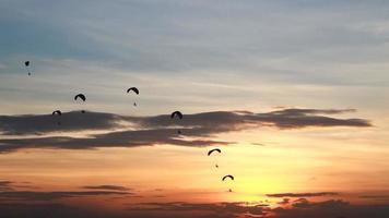 Group of Parachute or Paramotor Fly During Sunset