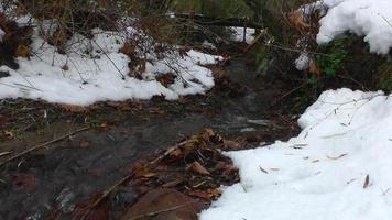 pequeno riacho nevado video