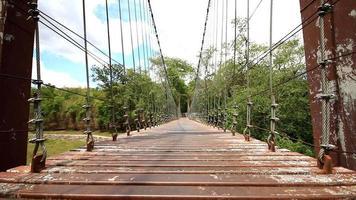 ponte de madeira, dolly shot. video