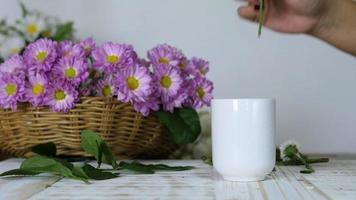 mãos pegando flores violetas colocando em um vaso