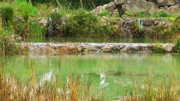 cachoeira e a água do lago video