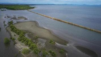 Fila de rompeolas de bambú en la costa del mar