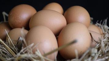 ovos de galinha em uma cesta