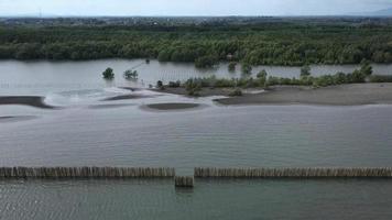 Row of bamboo wall wave break erosion