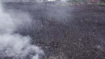 Burning grass, straw and stubble with heavy smoke.