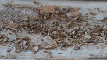 Astillas de madera en el piso de madera temblorosa video