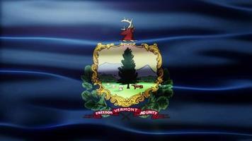 boucle de drapeau du Vermont video