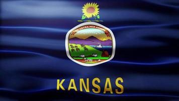 Kansas Flag Loop