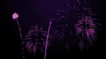 fogos de artifício explodem sobre fundo preto animação matiz roxo